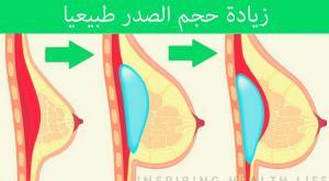صورة: تكبير حجم النهدين زيادة حجم الثديين طبيعيا