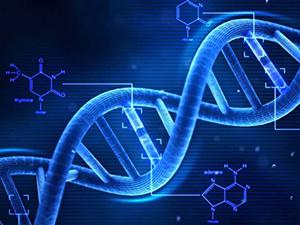 صورة: تأثير النظام الغذائي على الطفل من الناحية الجينية